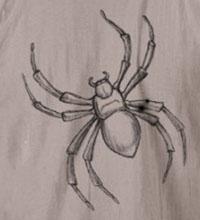 "spider ""template"""