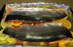 salmononcitrusbed