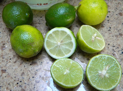 seedykeylimes