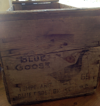 Blue Goose Growers Inc