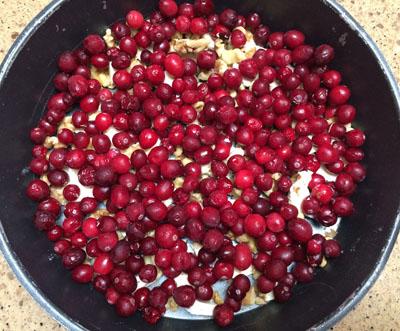 sprinkle cranberries on top