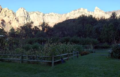 garlands garden