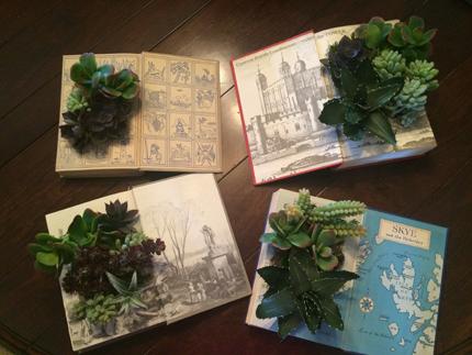 four succulent book planters