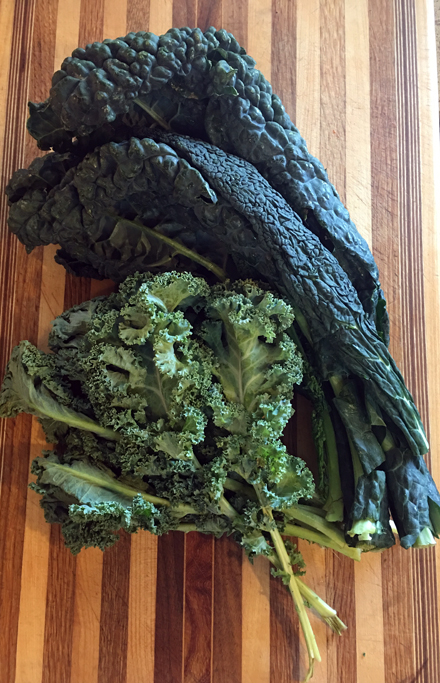 dinosaur and curly kale