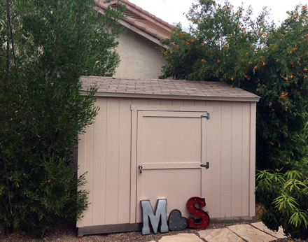 the-miscellany-shed